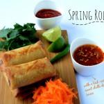Vegan Spring Rolls w/ Vegan sweet chilli dipping sauce