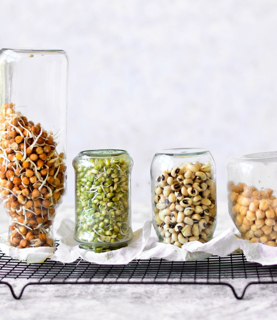 Homemade sprouts and the right way to eat seeds love is in my tummy soaking overnight before cooking is the right way to handle beans grains nuts and solutioingenieria Image collections