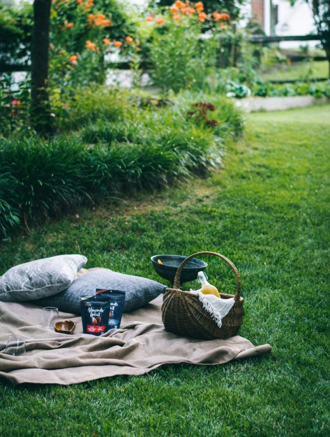A summer backyard picnic