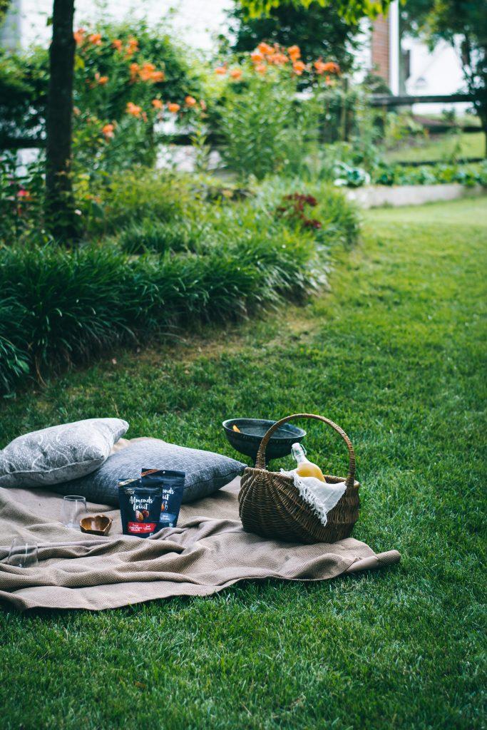 A summer backyard picnic